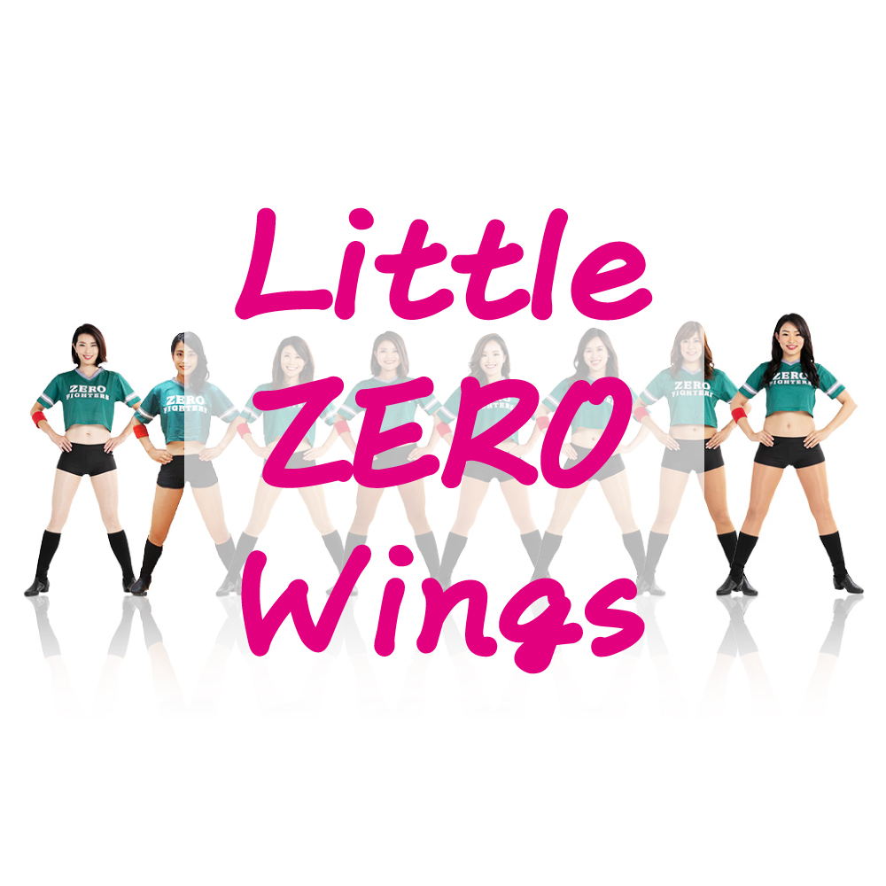 Little ZERO Wings